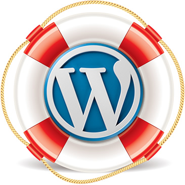 Wordpress premium support